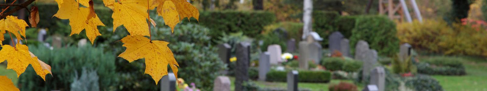 Friedhofsverwaltung Sophienkirchgemeinde