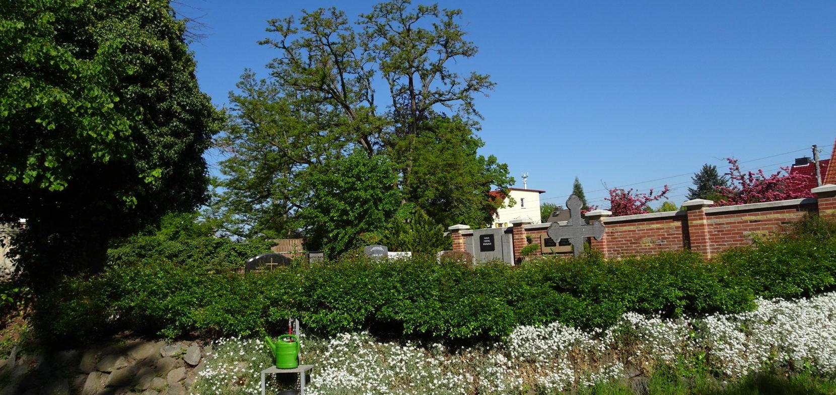 Friedhof Hänichen