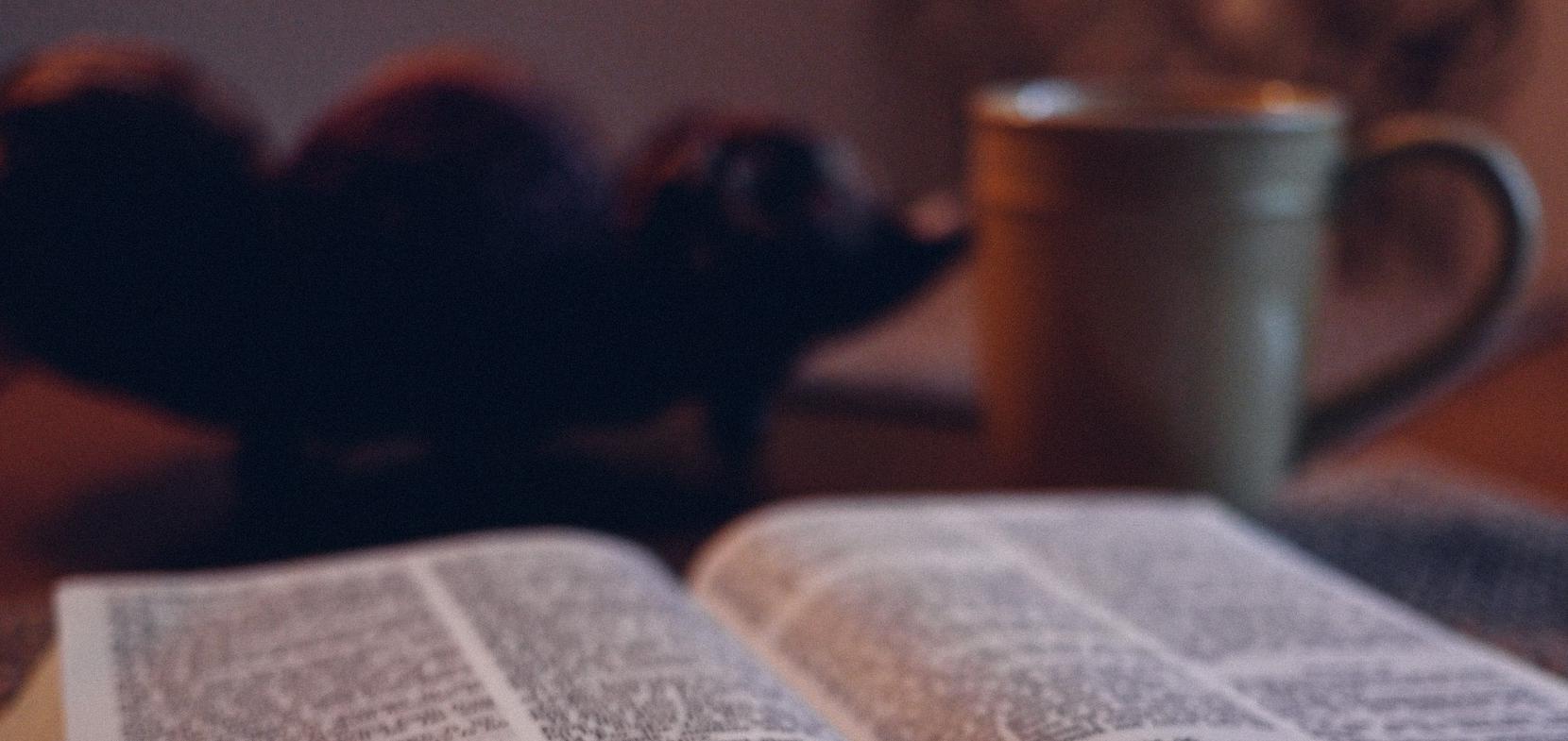 Bibelwoche Jesus begegnen